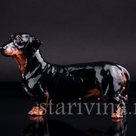 Статуэтка собаки из фарфора Черная такса, Royal Doulton, Великобритания, пер. пол. 20 в.