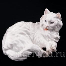 Ангорская кошка, Augarten Wien, Австрия, сер. 20 в