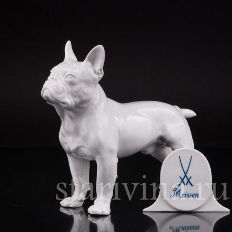 Статуэтка собаки из фарфора Французский бульдог, Meissen, Германия, 1981 г.